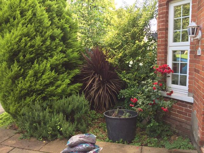 Small Front Garden Transformation in Woking